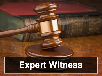 Expert Witness in the Courtroom